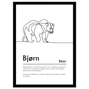 Bjørn plakat - Plakater med dyr og naturmotiv - Ztili.no