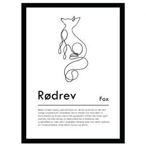 Rødrev plakat - Plakater med dyr og naturmotiv - Ztili.no